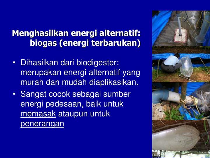 Dihasilkan dari biodigester: merupakan energi alternatif yang murah dan mudah diaplikasikan.