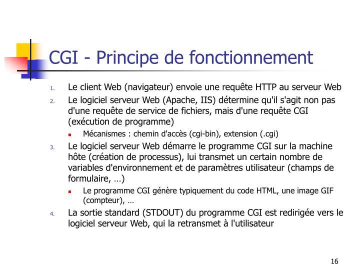 CGI - Principe de fonctionnement