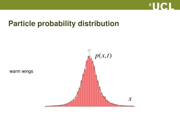 Particle probability distribution