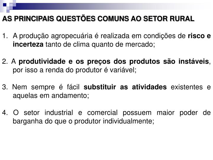 AS PRINCIPAIS QUESTÕES COMUNS AO SETOR RURAL