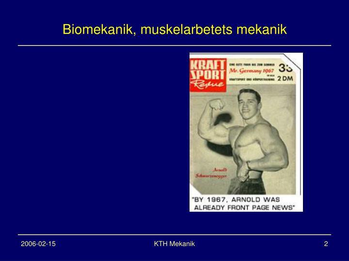 Biomekanik, muskelarbetets mekanik