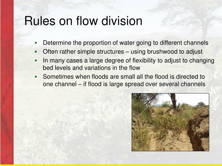 Rules on flow division