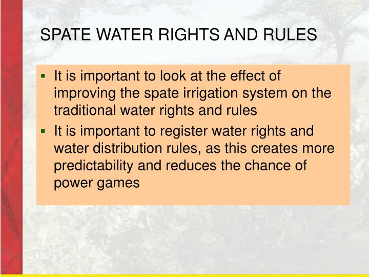 SPATE WATER RIGHTS AND RULES