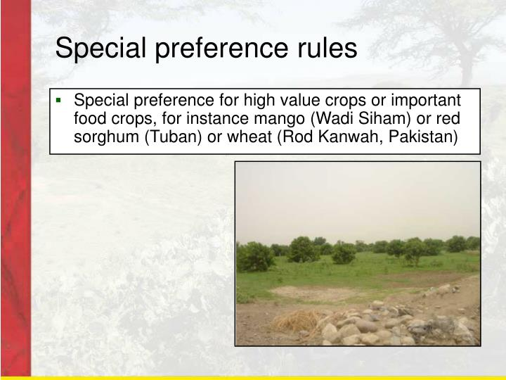 Special preference rules
