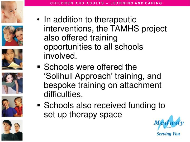 In addition to therapeutic interventions, the TAMHS project also offered training opportunities to all schools involved.