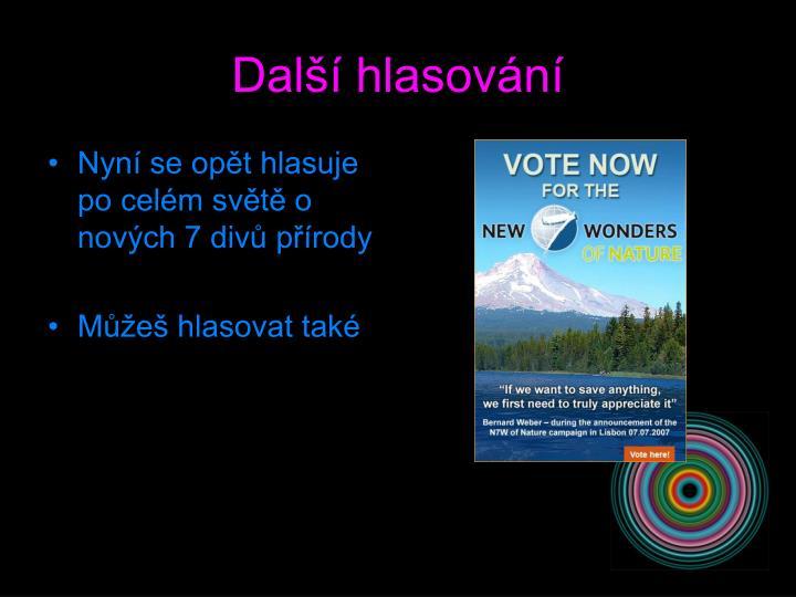 Další hlasování