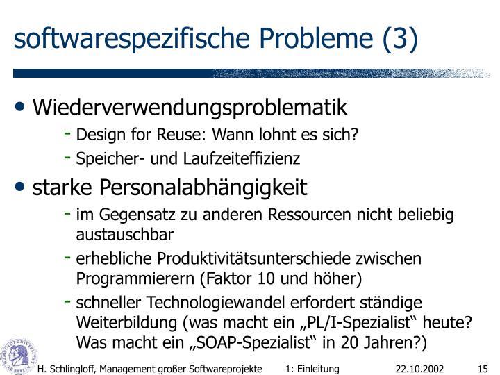 softwarespezifische Probleme (3)