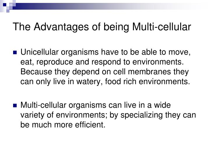 The Advantages of being Multi-cellular