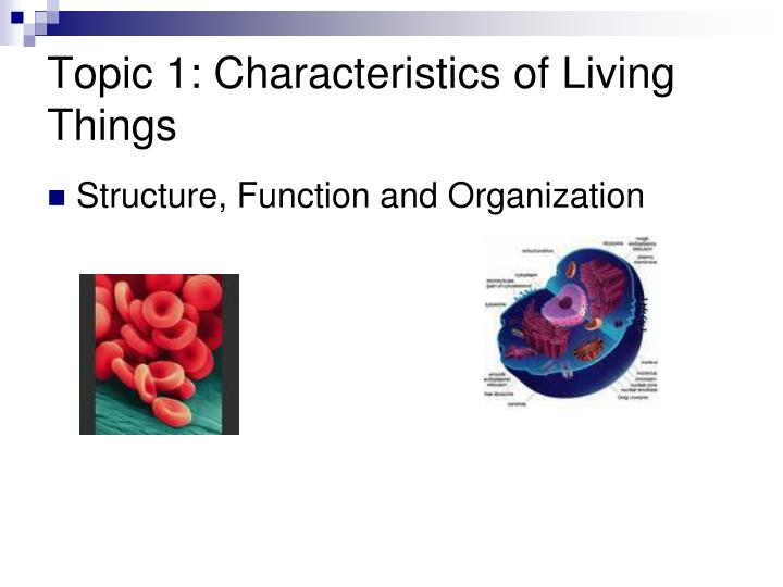 Topic 1: Characteristics of Living Things