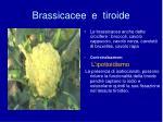 brassicacee e tiroide