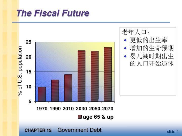 The Fiscal Future