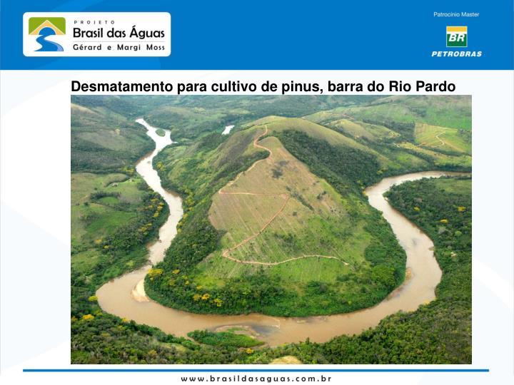 Desmatamento para cultivo de pinus, barra do Rio Pardo