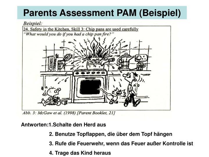 Parents Assessment PAM (Beispiel)
