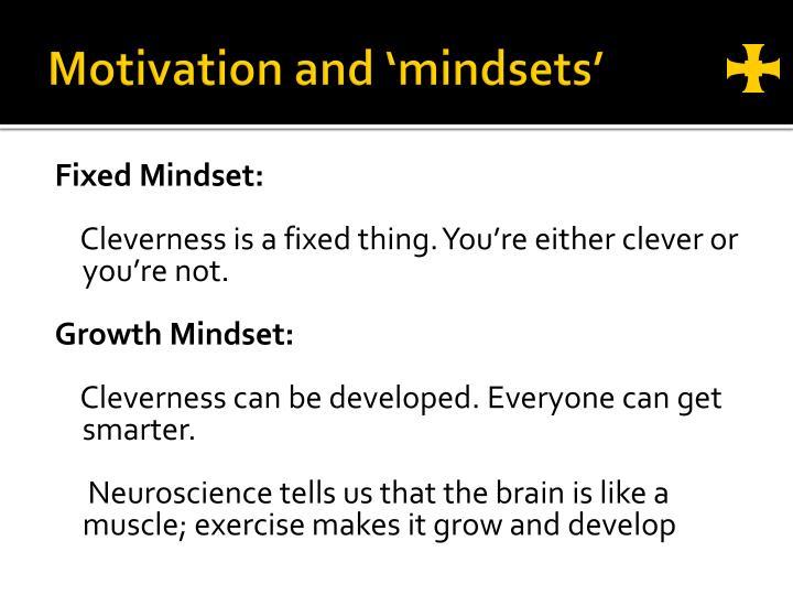 Motivation and 'mindsets'