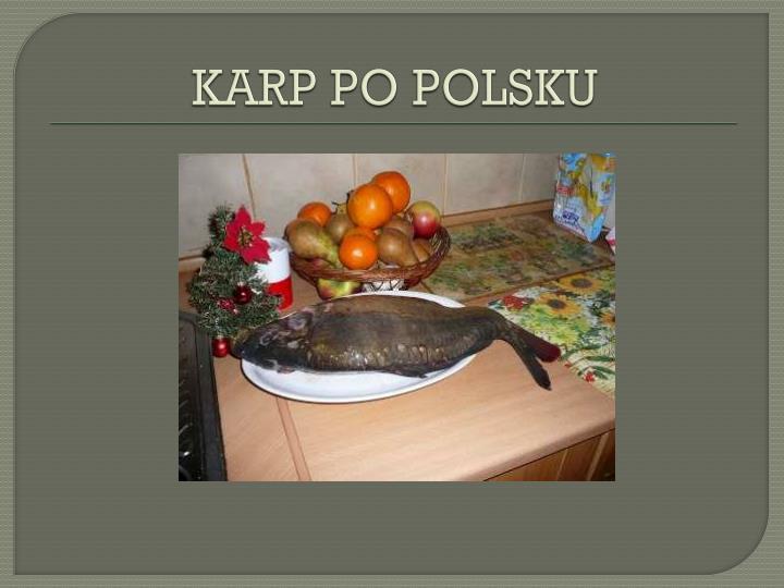 KARP PO POLSKU