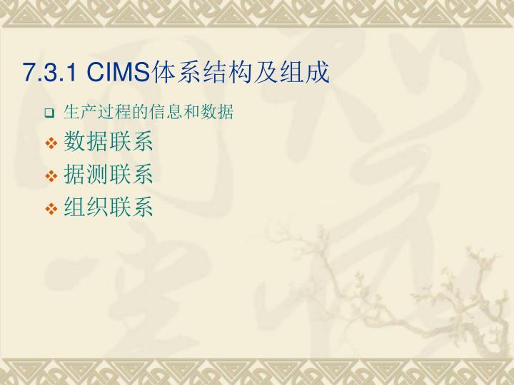 7.3.1 CIMS