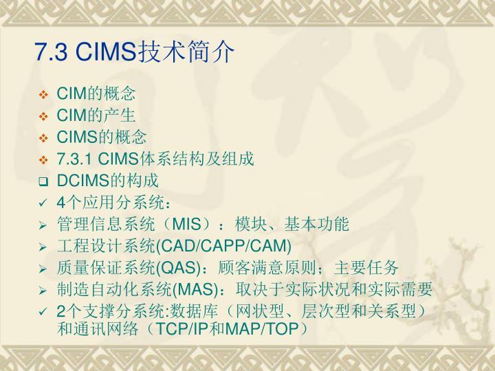 7.3 CIMS