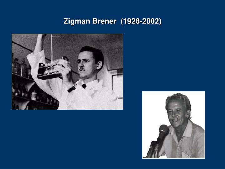 Zigman Brener  (1928-2002)
