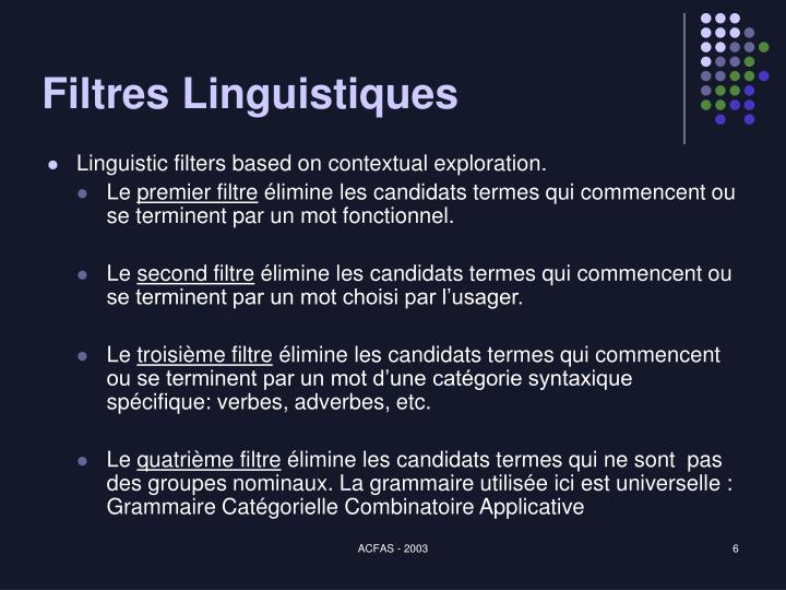 Filtres Linguistiques
