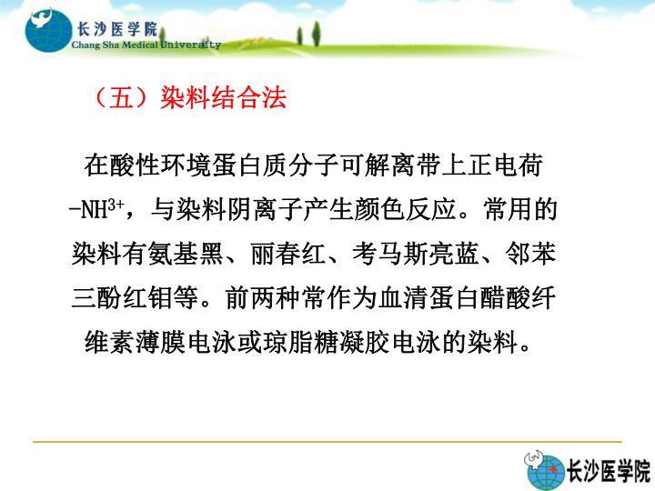 (五)染料结合法