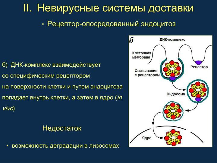 Невирусные системы доставки
