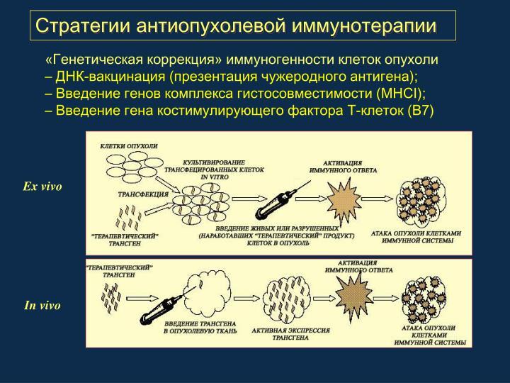 Стратегии антиопухолевой иммунотерапии