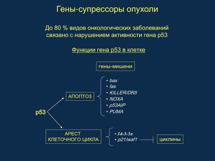 гены-мишени