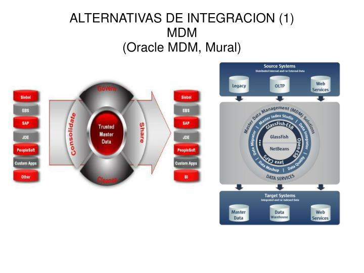 ALTERNATIVAS DE INTEGRACION (1)
