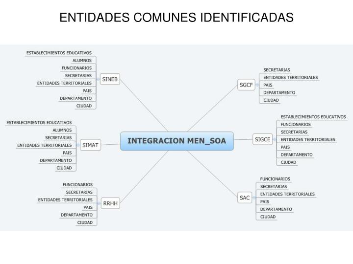ENTIDADES COMUNES IDENTIFICADAS