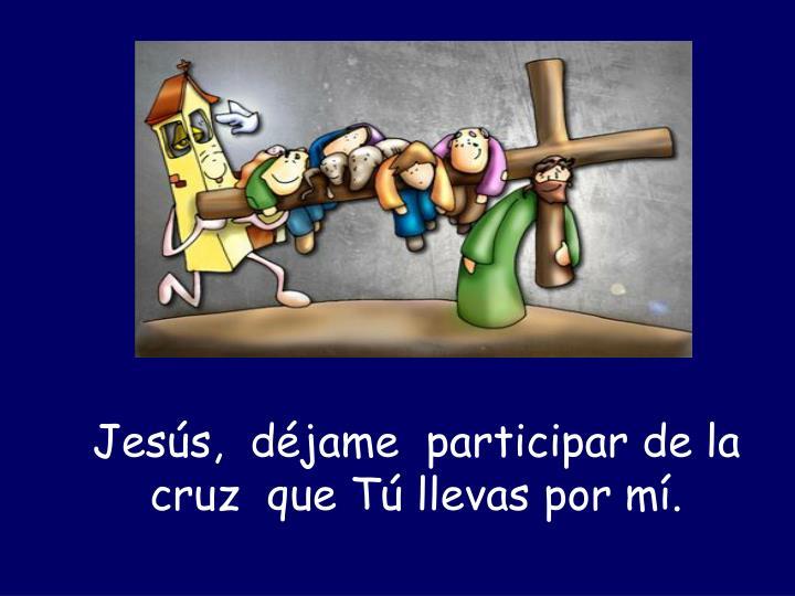 Jesús,  déjame  participar de la  cruz  que Tú llevas por mí.