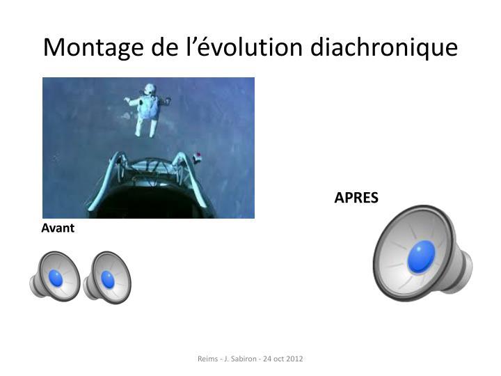 Montage de l'évolution diachronique