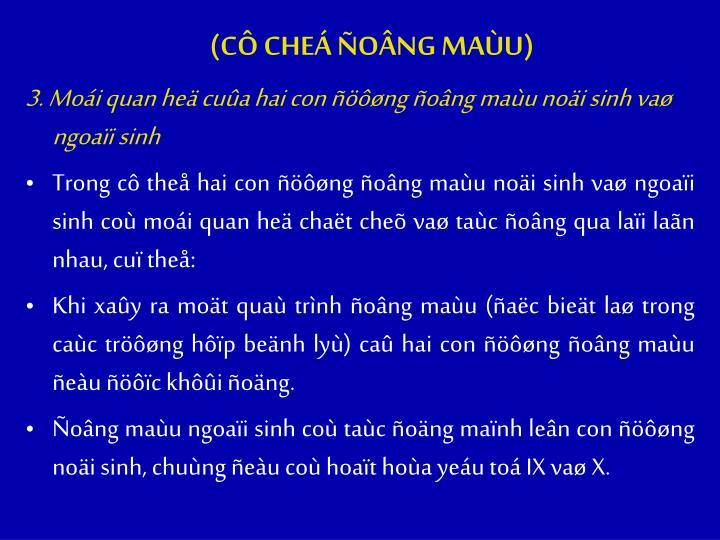 (C CHE ONG MAU)