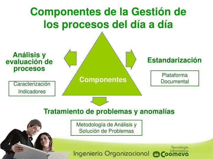 Componentes de la Gestión de los procesos del día a día