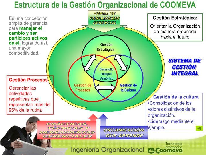 Estructura de la Gestión Organizacional de COOMEVA