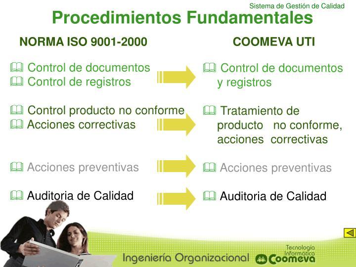 Procedimientos Fundamentales