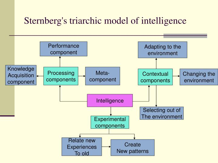 sternberg s triarchic theory of intelligence Describe sternberg's information theory of  formulated the triarchic theory of intelligence taking into account the way human beings process information in.