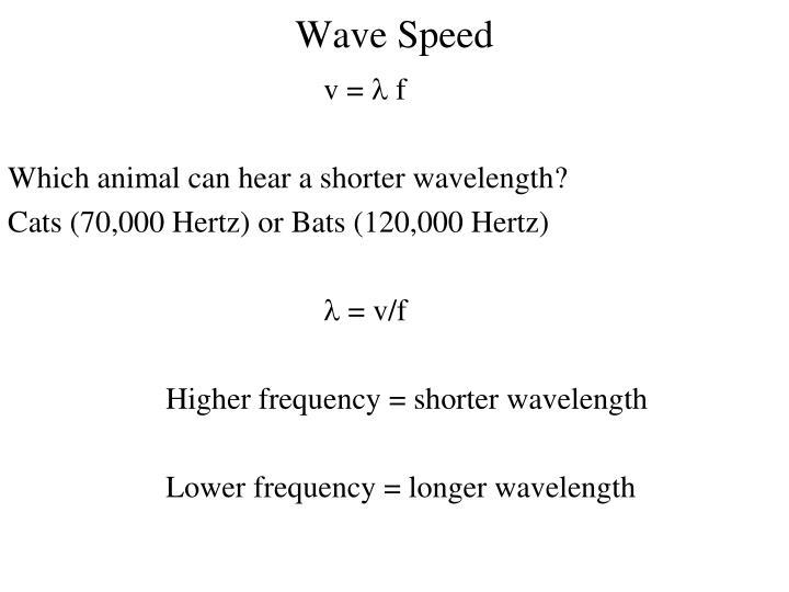 Wave Speed