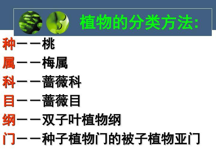植物的分类方法