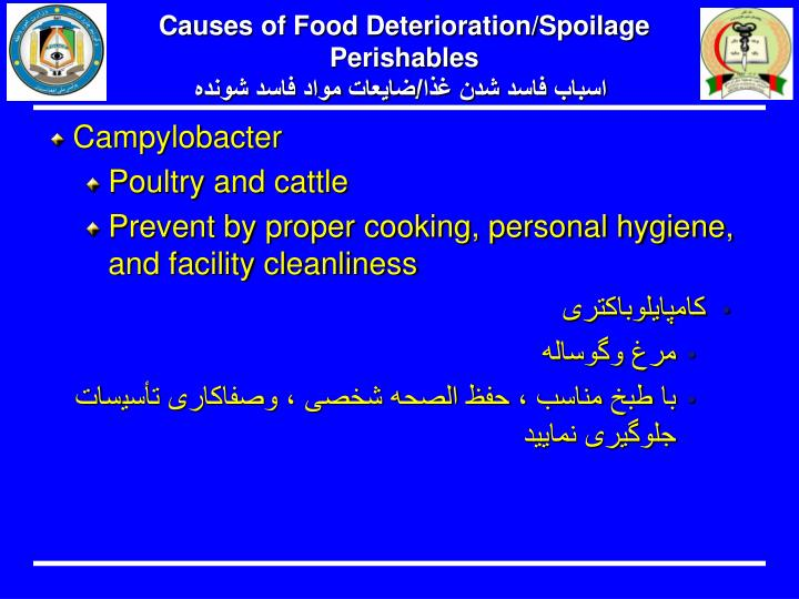 Causes of Food Deterioration/Spoilage  Perishables