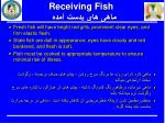 receiving fish