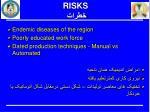risks1
