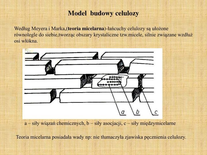 Model  budowy celulozy