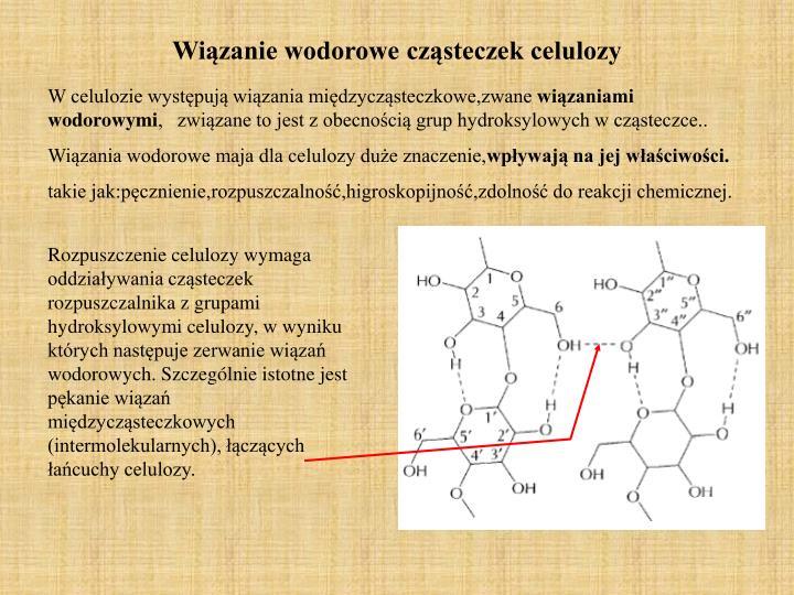 Wiązanie wodorowe cząsteczek celulozy
