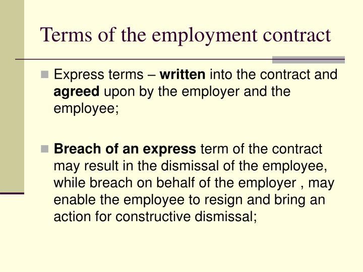 Terms of the employment contract