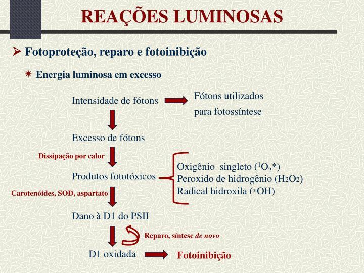 REAÇÕES LUMINOSAS