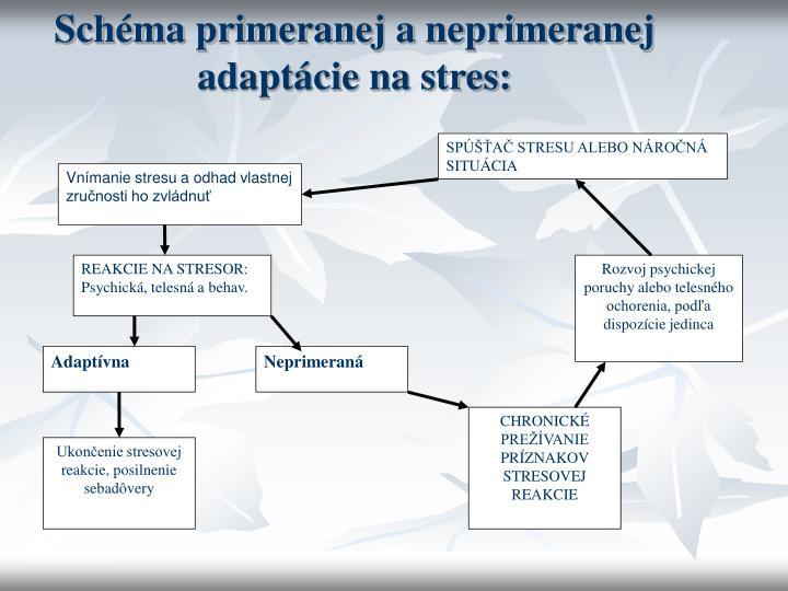 Schéma primeranej aneprimeranej adaptácie na stres: