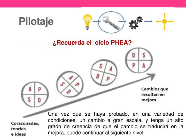 Pilotaje