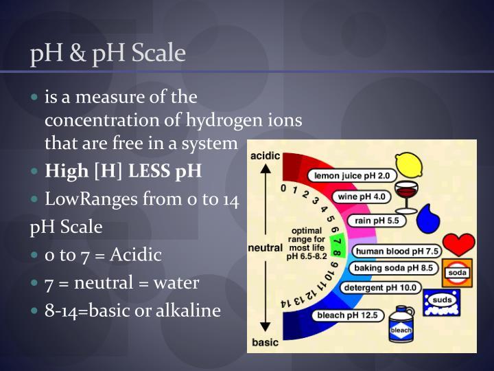 pH & pH Scale