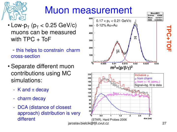 Muon measurement