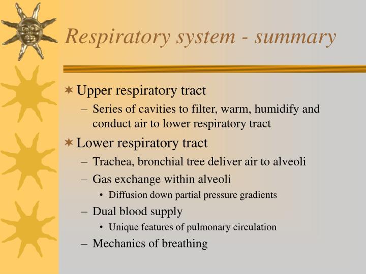 Respiratory system - summary